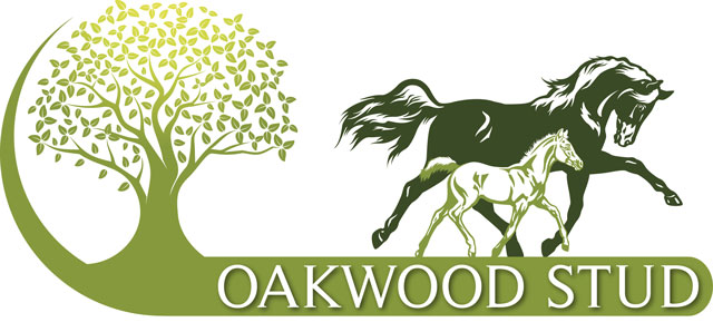 Oakwood Stud